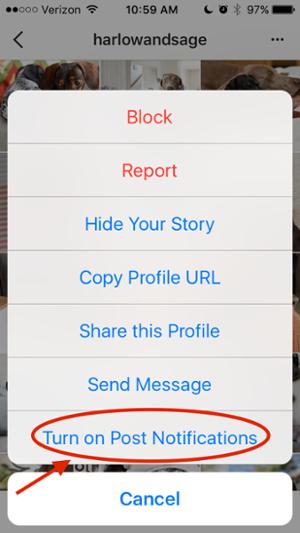 "Activar notifications.png"" title = ""Activar notifications.png"" width = ""300"" style = ""width: 300px"