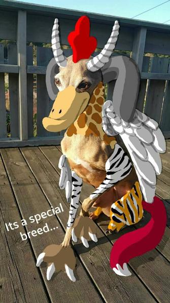 Increíble dibujo de Snapchat de perro con características de criaturas míticas